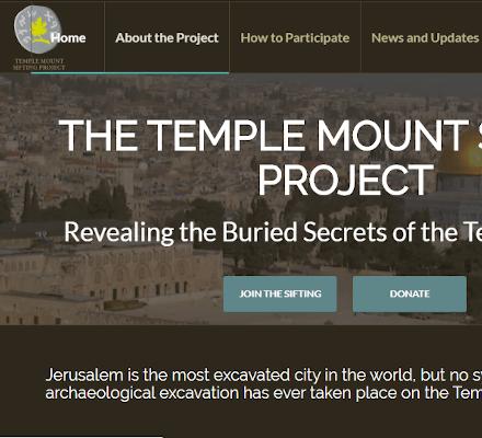 Snapshot of TMSP website