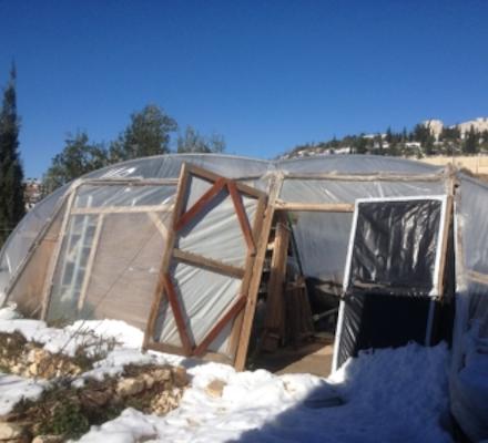 חממת הסינון לאחר סופת שלגים
