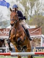 Chatsworth Horse Trials 2015-65