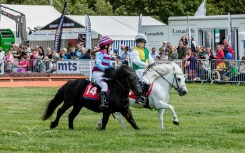 AshbyShow2015_Photography (27 of 67)
