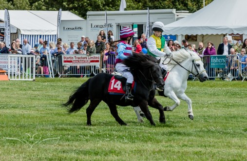 AshbyShow2015_Photography (28 of 67)