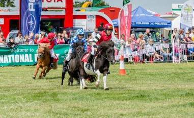 AshbyShow2015_Photography (8 of 67)