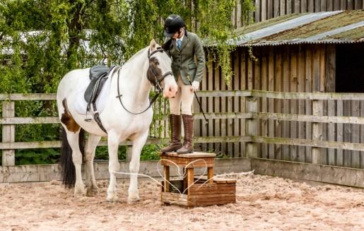 Equine_Photography_DerbyshireTMSPhotography