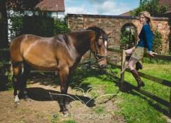 EquinePhotographer_Derbyshire-28