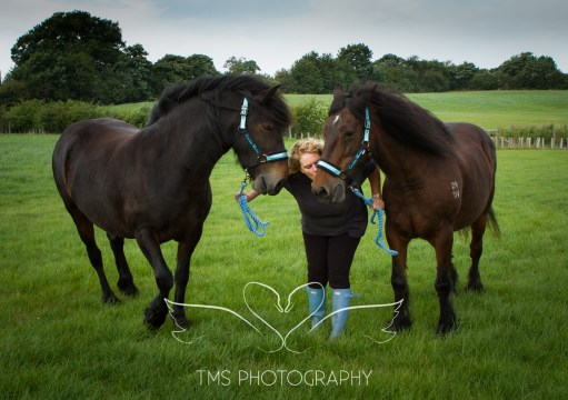 equinephotographer_Leicestershire-45