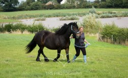 equinephotographer_Leicestershire-50