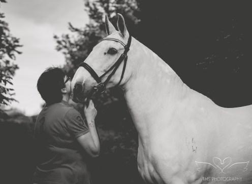 equine_photographer_Derbyshire-26