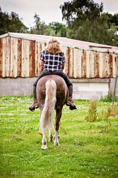 equine_phootgrapher_Staffordshire-13