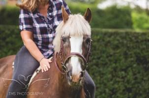 equine_phootgrapher_Staffordshire-3