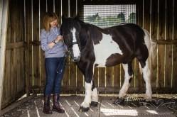 equine_photographer_derbyshire-8