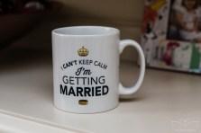 Hoar_cross_hall_wedding-Staffordshire-16