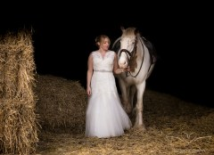 equine_Photographer_Leicestershire-101