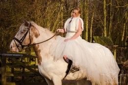 equine_Photographer_Leicestershire-20