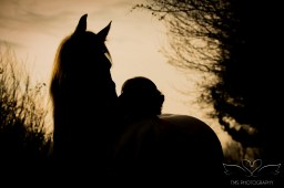 equine_Photographer_Leicestershire-56