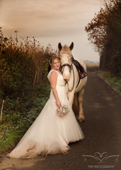 equine_Photographer_Leicestershire-78