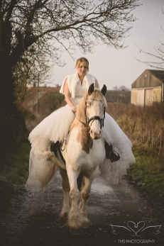 equine_Photographer_Leicestershire