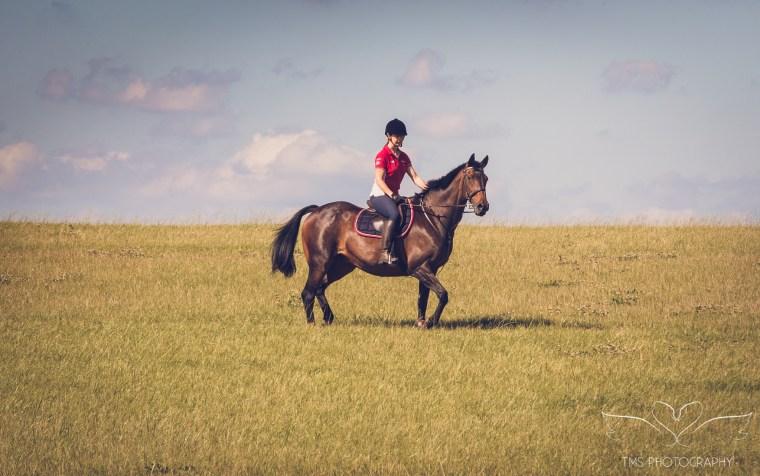 equine_photographer_Derbyshire-76