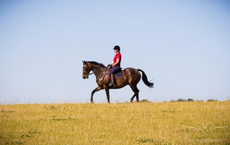 equine_photographer_Derbyshire-78