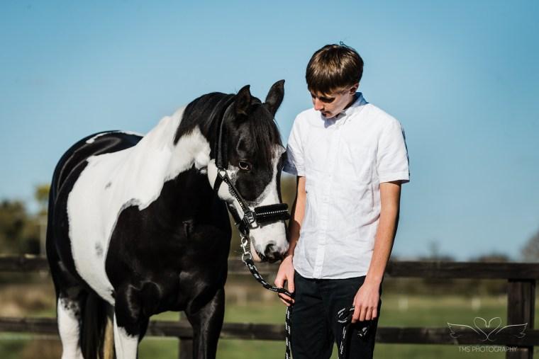horse owner partnership