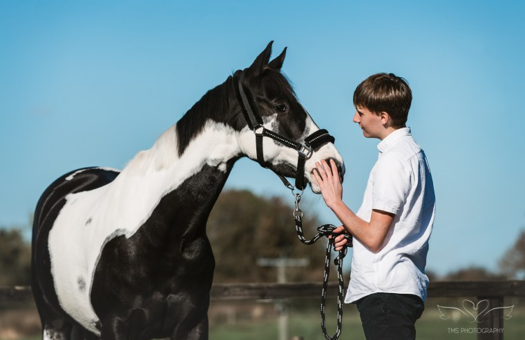 horse photography in northamptonshiire
