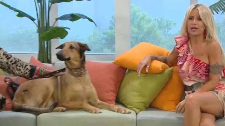 Florencia Peña conoció a la bisnieta de Fatiga. (Foto: captura de Telefe).