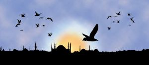 """The image """"https://i1.wp.com/tn3-2.deviantart.com/fs21/300W/i/2007/259/3/8/istanbul_by_ademmm.jpg"""" cannot be displayed, because it contains errors."""