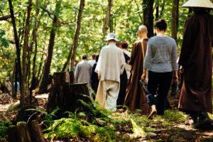 Walking Mediation in the Woods