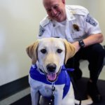 Comfort dog joining UNH PD