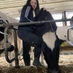 Livestock classes struggle with remote learning