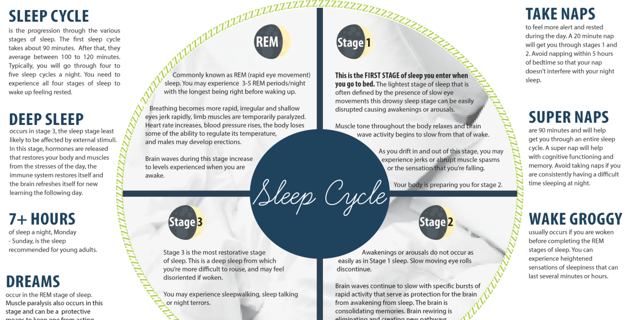 The Importance of sleep for college students