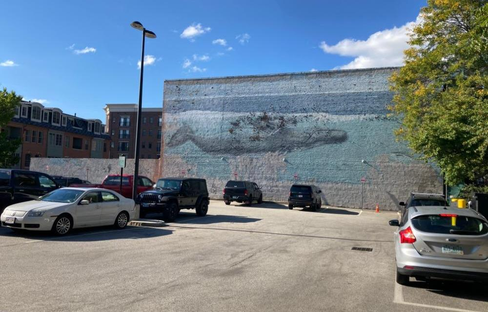 Saying goodbye to the beloved Portsmouth whale wall
