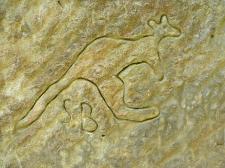 kangaroo_art_rock_engraving