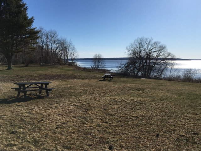 A view of picnic tables in a clearing overlooking Penobscot Bay