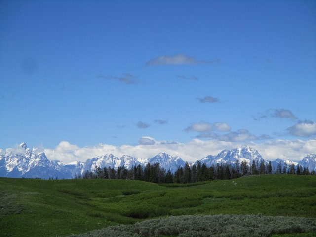 A view of a meadow with the Grand Tetons in the background.