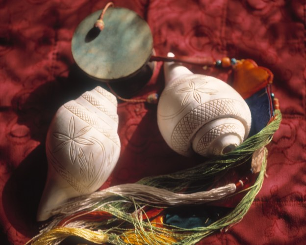 Shells and Drum
