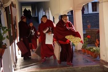 Dolma Ling Nunnery and Institute - Tibetan Nuns Project