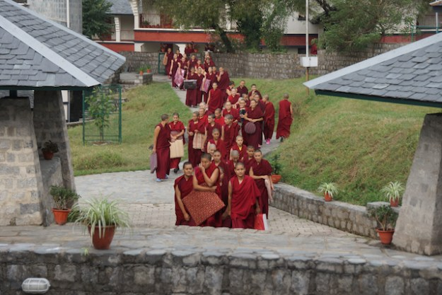 Tibetan Buddhist nuns arriving at debate session at Dolma Ling nunnery Oct 2013 Tibetan Nuns Project