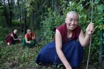 Tibetan nun helping to landscape retreat huts