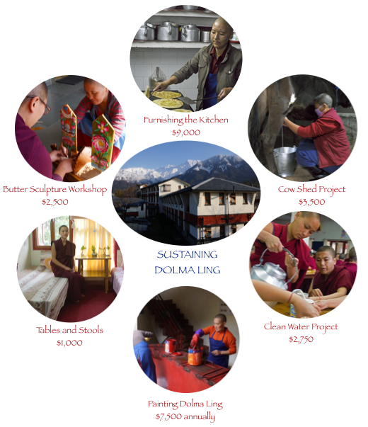 Sustaining Dolma Ling Nunnery with special projects