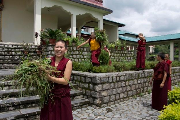 Buddhist nuns Shugsep Nunnery
