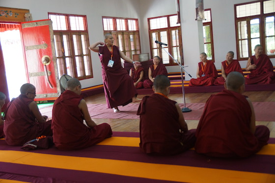 nun debating, Tibetan Buddhist debate, Geshema, Geshema exams, Tibetan Buddhist nun, Tibetan Buddhism, Tibetan Nuns Project