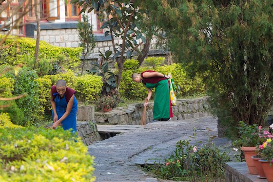 Dolma Ling Nunnery, Tibetan Buddhist nuns, coping with the monsoon