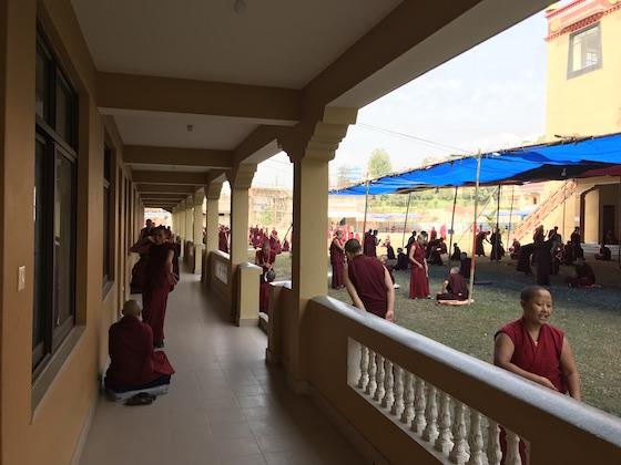 2018 Inter-Nunnery Debate, 2018 Jang Gonchoe, Kopan Nunnery, Tibetan nuns, Tibetan Buddhist debate, inter-nunnery debate, Buddhist nunnery