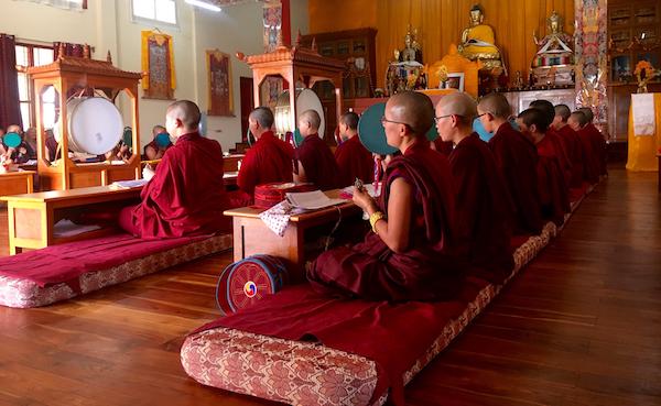 Shugsep Nunnery, Tibetan Nuns Project, new floor, Tibetan temple, Buddhist nuns
