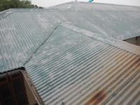 roof painting, metal roof, Shugsep Nunnery