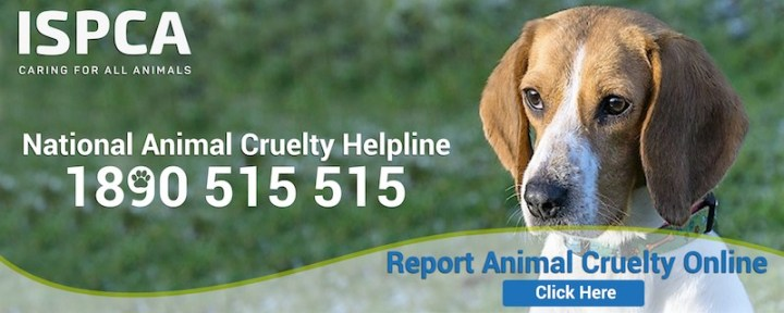ISPCA Report Cruelty Banner