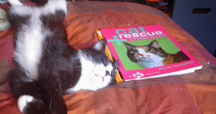 Ralph's Reading