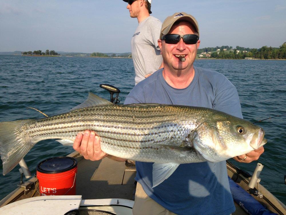 Watts Bar Tennessee Fishing Trips Seasonal Full and Half Day