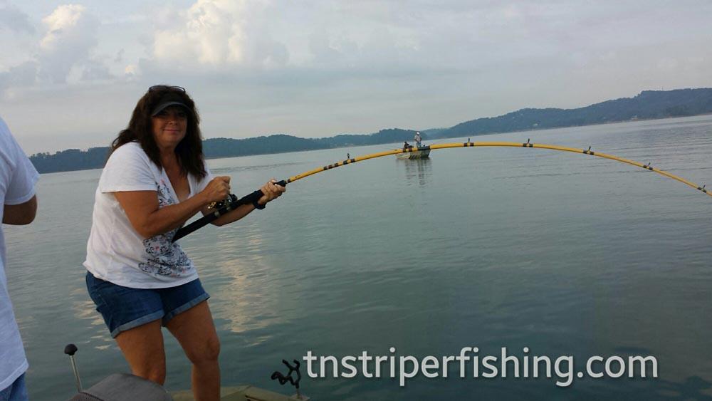Umbrella Fishing Lake Tennessee Captain Jay