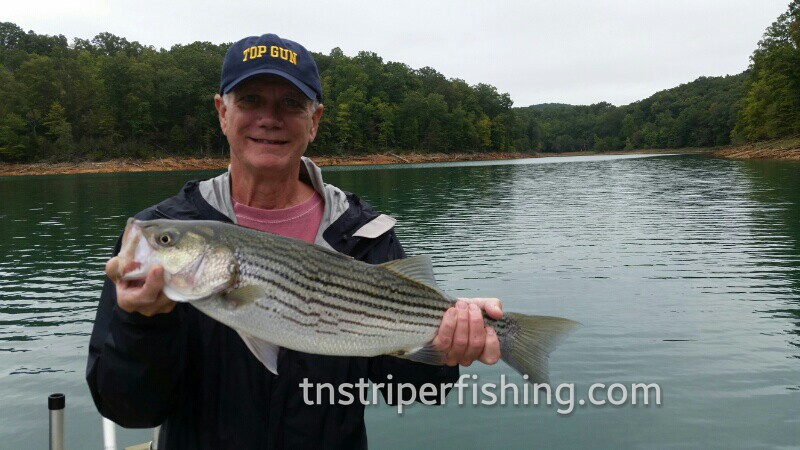 Lake Cherokee and Watts Bar